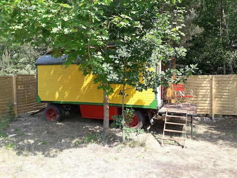 ZIRKUSWAGEN AM SEE Tiny House
