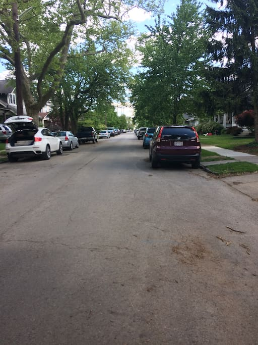 Tree lined, residential street with plenty of off street parking