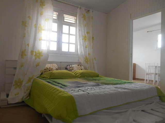 Bel appartement au pied de la Pelée(F2)