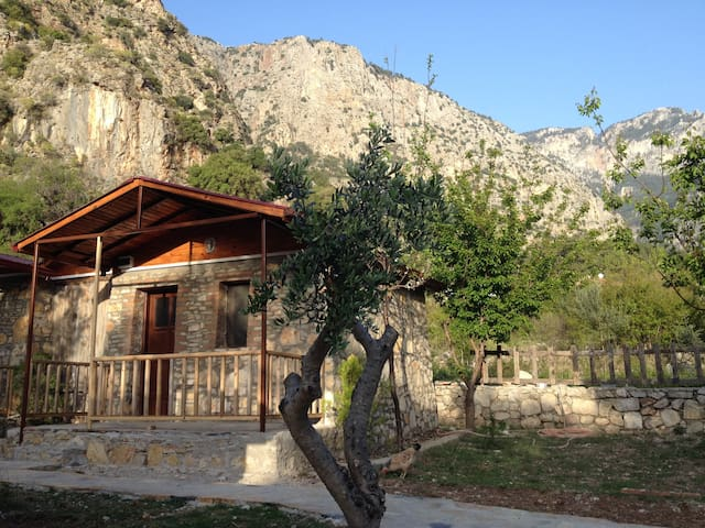 Your Forest Cabin near the Beach - Ölüdeniz - Bed & Breakfast