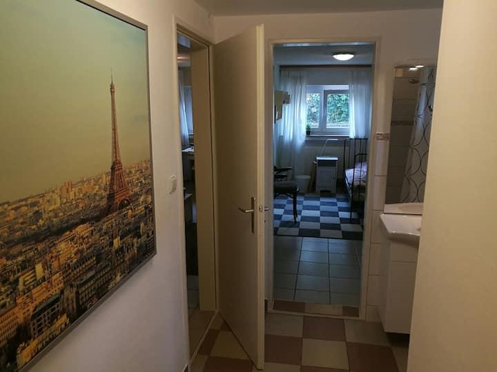 Neu renoviertes Zweiraumappartement mit TV