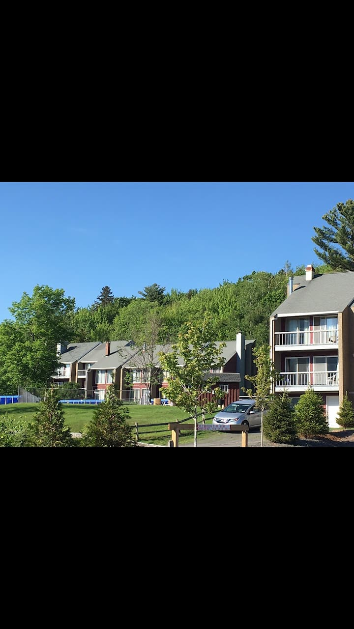 Entire condo in Hunter NY, Gorgeous area- sleeps 6