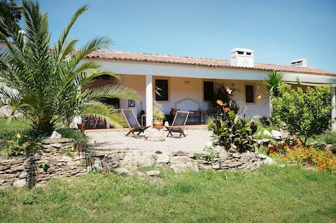 Monte do Barranquinho - Cozy Room for 2