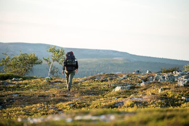 Mysig stuga i Härjedalen- 200 m från bad & fiske