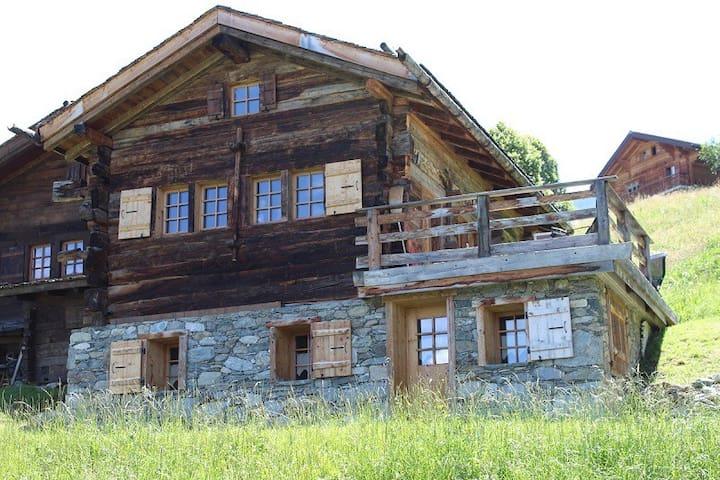 Chalet IV (logement entier et privatif) - Riddes - Almhütte