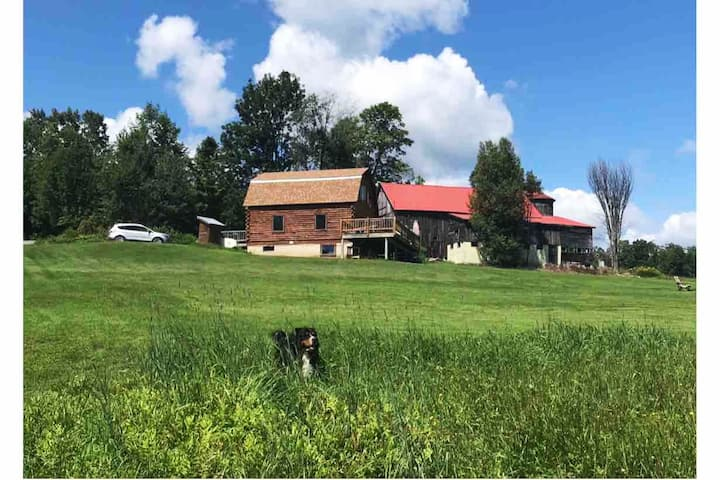 Log Cabin with Amazing View & Yard, Pets OK, Okemo