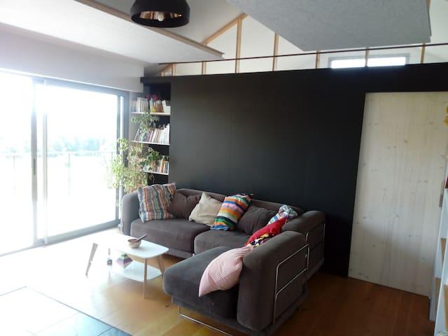 salon avec canapé lit et poêle