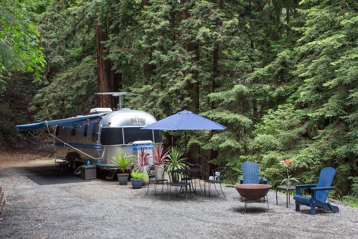 Santa Cruz Redwood Retreat - Scotts Valley - Lakókocsi/lakóautó