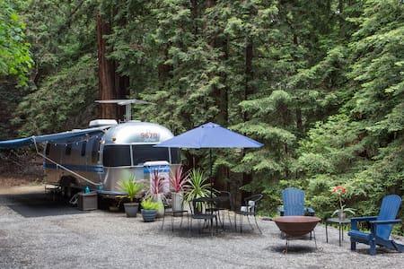 Santa Cruz Redwood Retreat - Scotts Valley - 露营车/房车