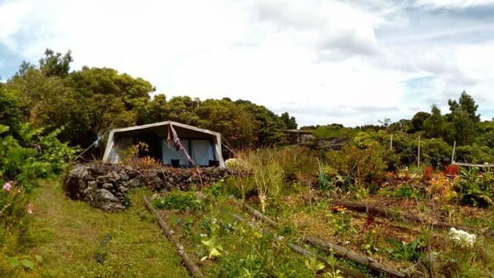 AbbyVille Ecocamping - Villa Vegetable Garden