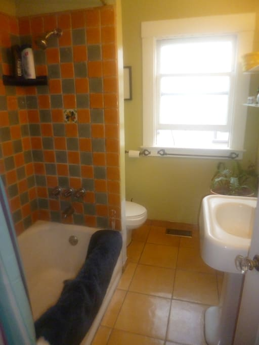 Your nicely Tiled Bathroom