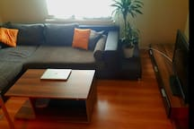 3 Room Apartment /  Exhibition Guests