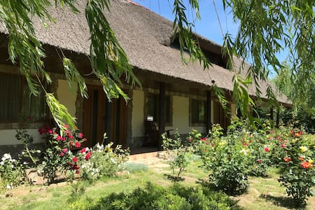 Apartments in traditional house in Danube Delta