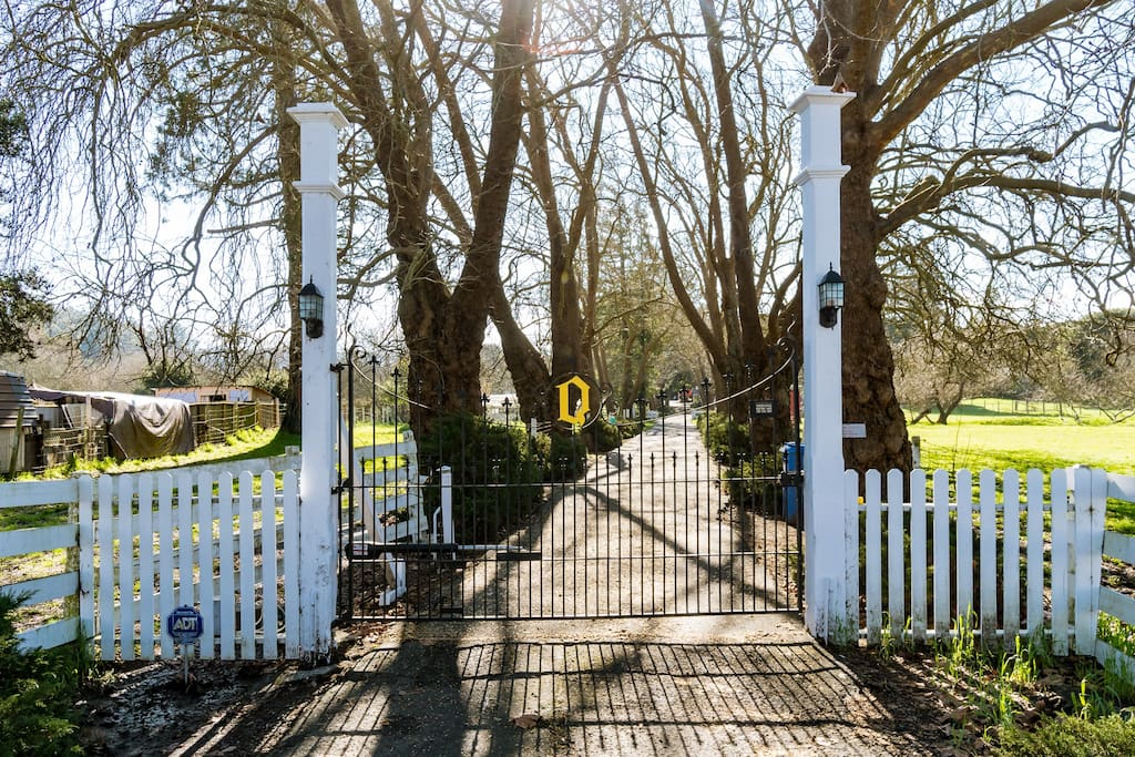Impressive Front Gate with Keyless Entry. The Q on the gate symbolic of this lovely home we fondly refer to as The Queen