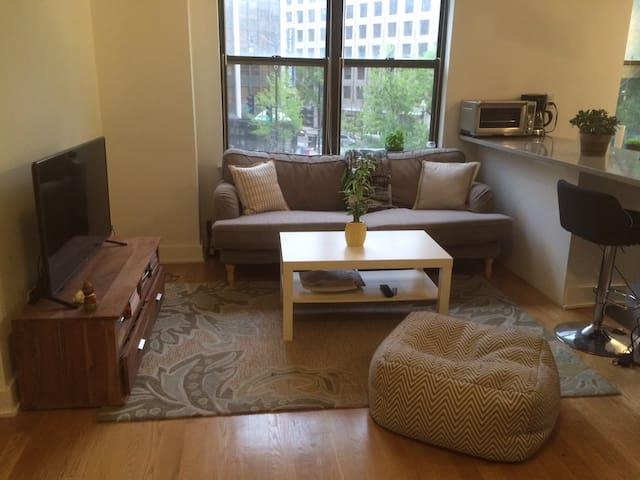 Luxury 2 Bedroom Apt, Private Room - Washington - Apartamento