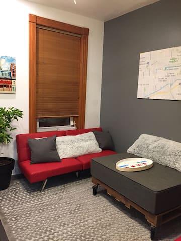 Clean tidy apartment in East Pilsen