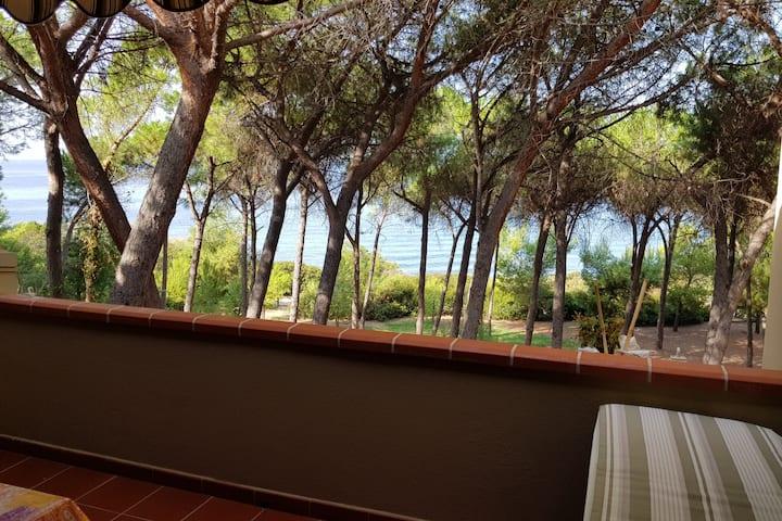Deliziosa casetta vacanze in Residence privato!