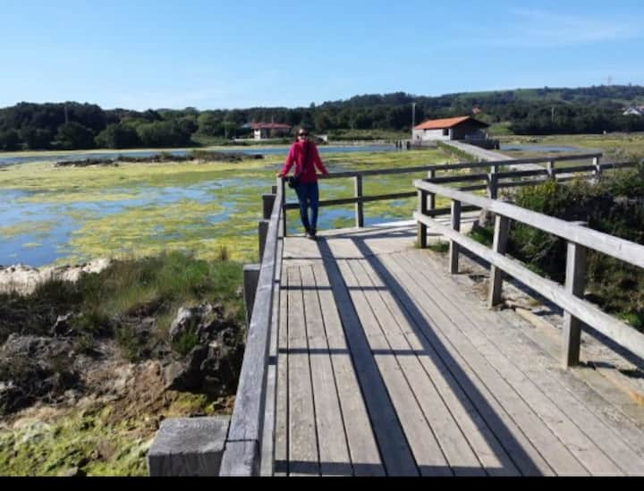 parque natural marismas de santoña piscina (gama)