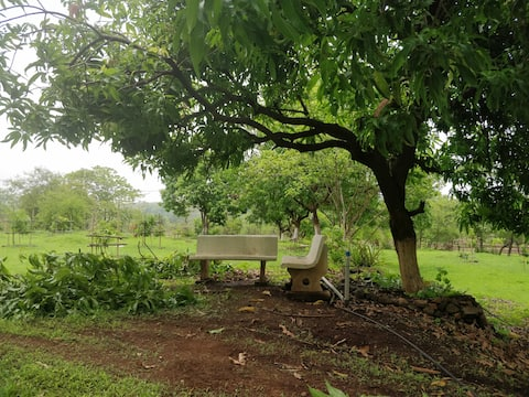 ShriKutir Organic Farms, Farm House, Farm Stay