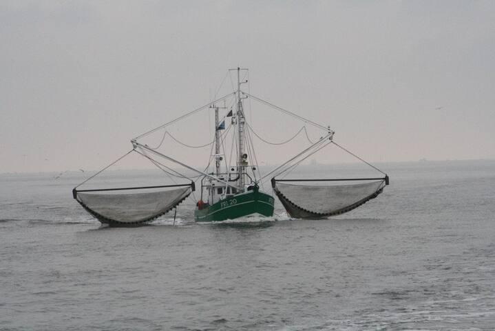 Krabbenfischer beim Fang einholen