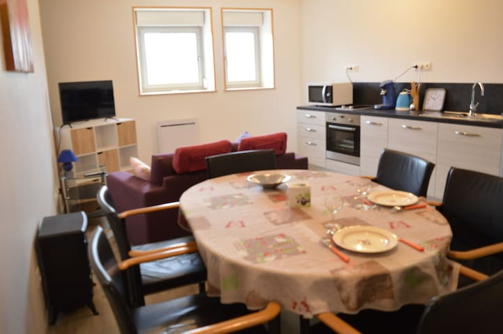 Joli logement T2 50 m² adapté pour handicapés - Isches - Flat