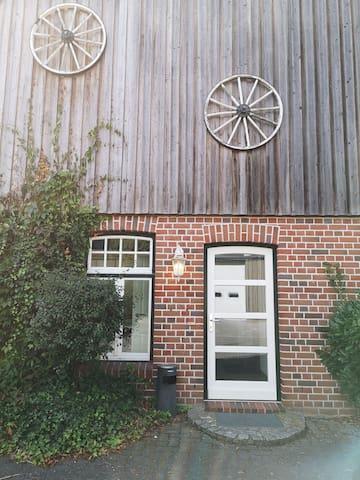 3,5 Zimmer Erdgeschoss Appartement Hasenmoor, B206