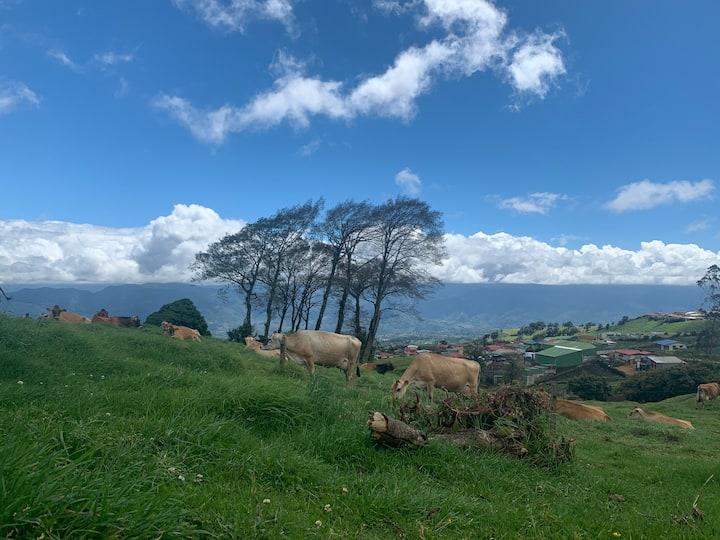 Un lugar tranquilo y verde para sus vacaciones