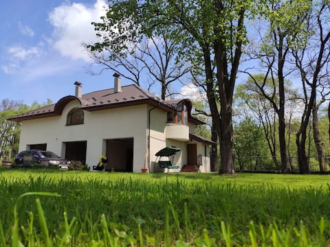 Maison en bois à Morchyn