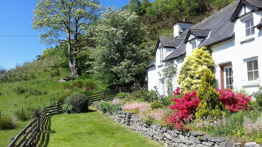 Farmhouse - Snowdonia National Park
