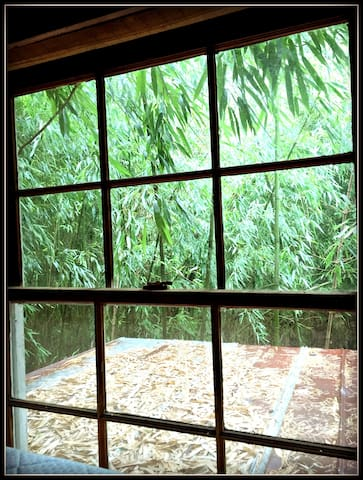 View out of the sleeping loft. This is the North gabled window with a view of the 1871  reclaimed Georgia barn tin roofing
