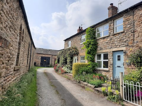 Charming, pet-friendly dales cottage (with WiFi)
