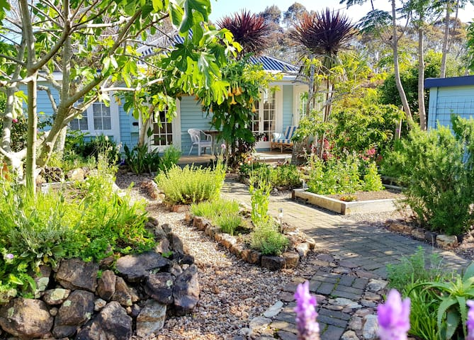 Stunning Totara Cottage, near Onetangi Beach