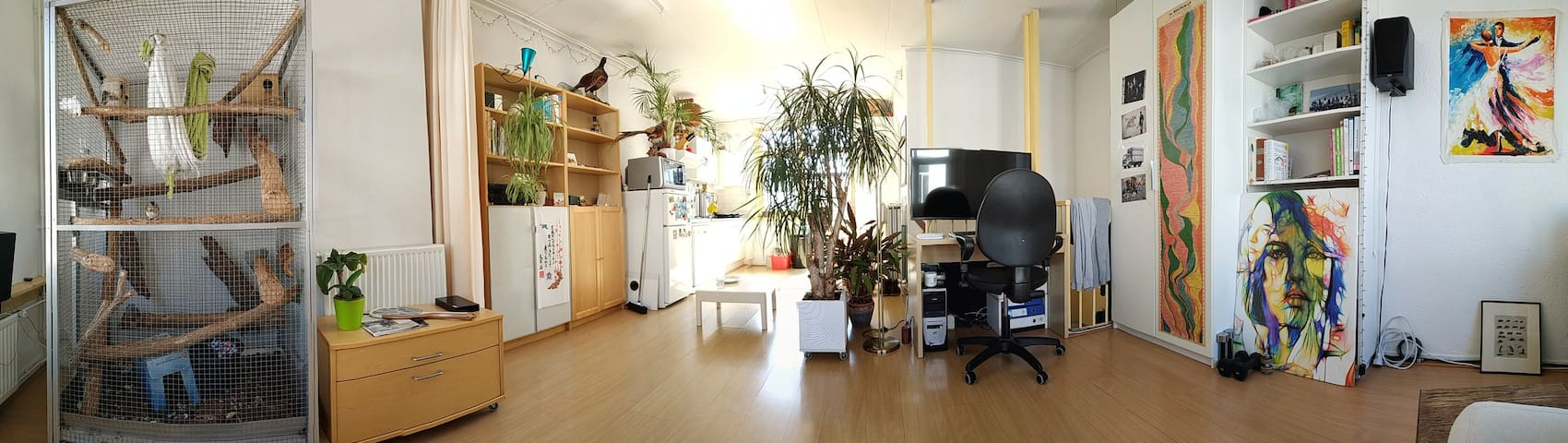 Studio near city center and trainstation