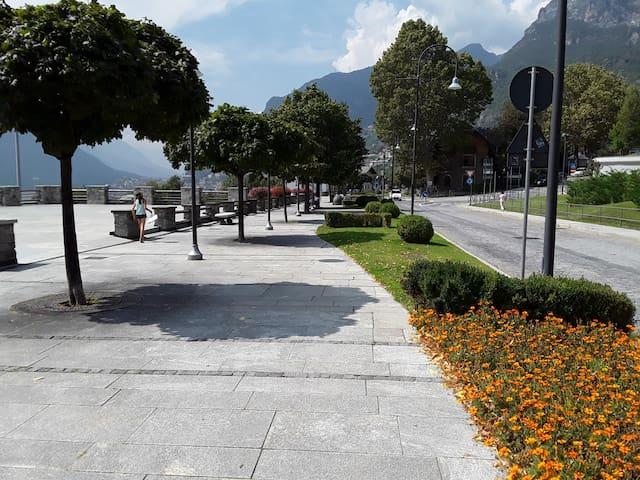 Il viale alberato e fiorito....dove è bello passeggiare...riposare....contemplare...