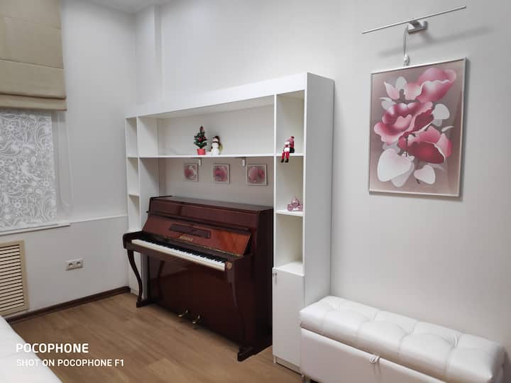 2-х комнатная квартира в центре под Кремлем