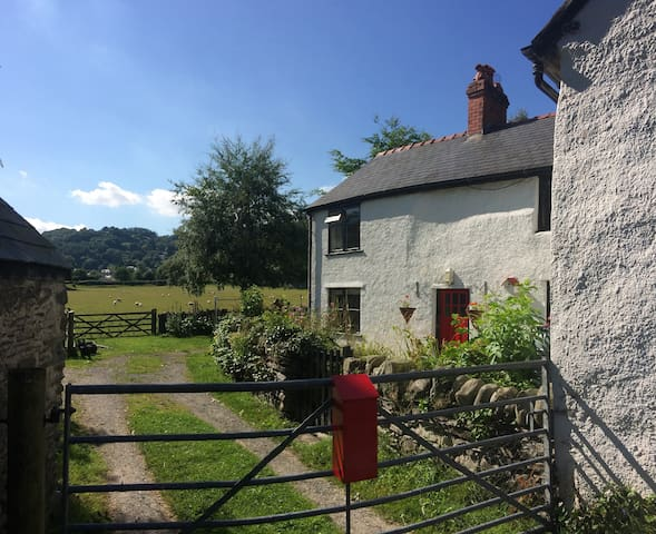 My beautiful Welsh Cottage
