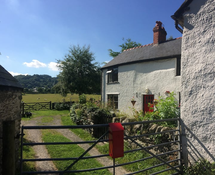 Traditional Welsh stone cottage in Ceiriog Valley
