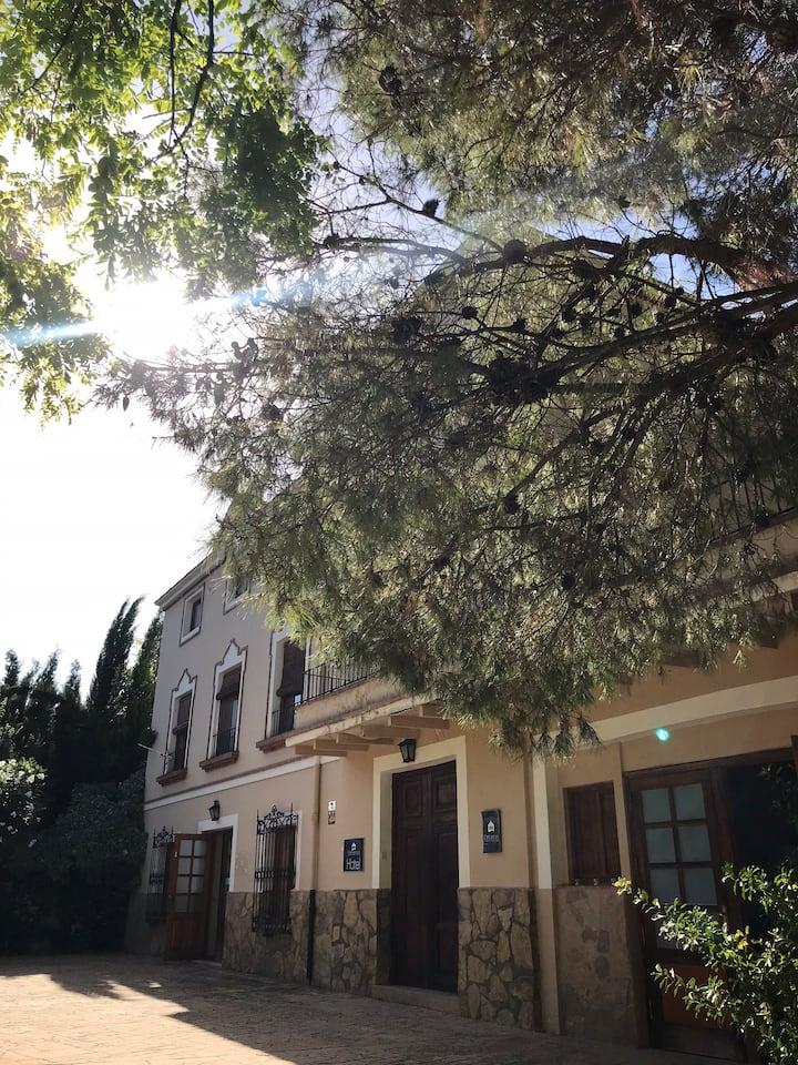 Espacioso apartamento en Masía San Antonio