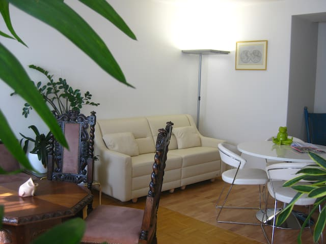 Bright apartment, near the center