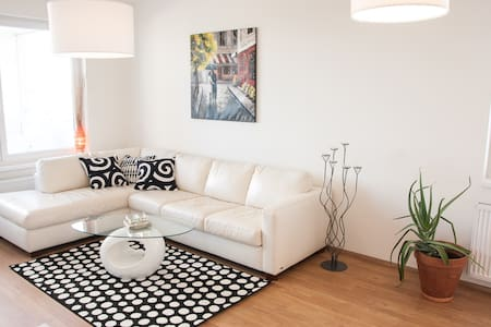 Spacious brand new appartment - Apartment