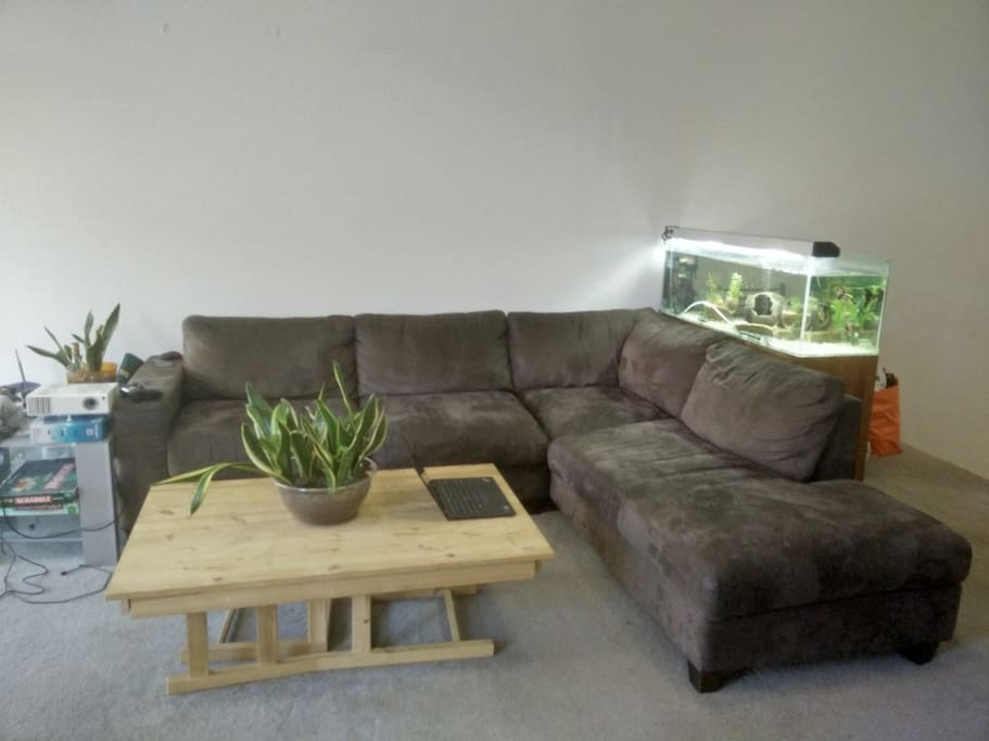Fish tank which you don't need to worry about