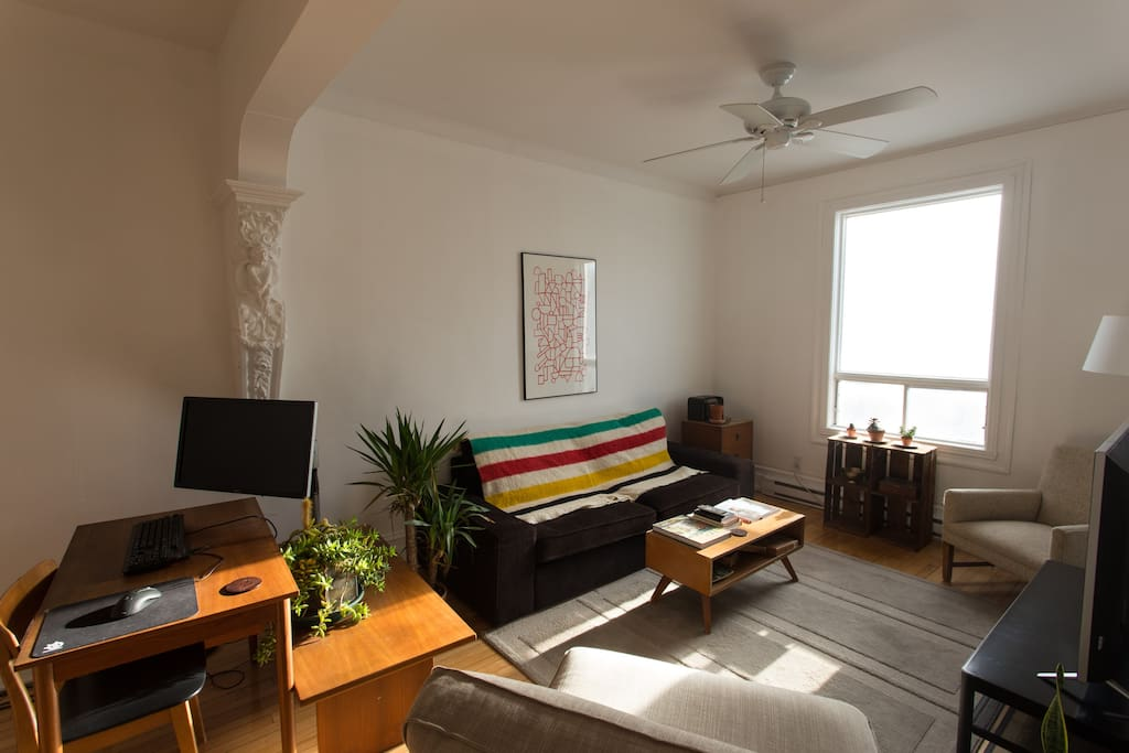 Bright, Cozy Living Room / Work Space