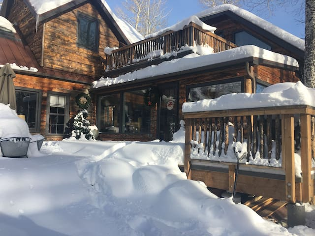 Home Sweet Home - Perfect family mountain getaway! - Salida - Blockhütte