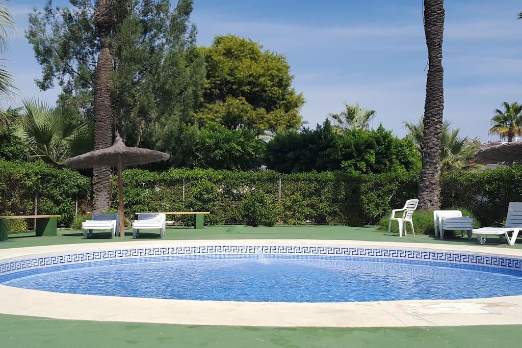 + piscine pour petits