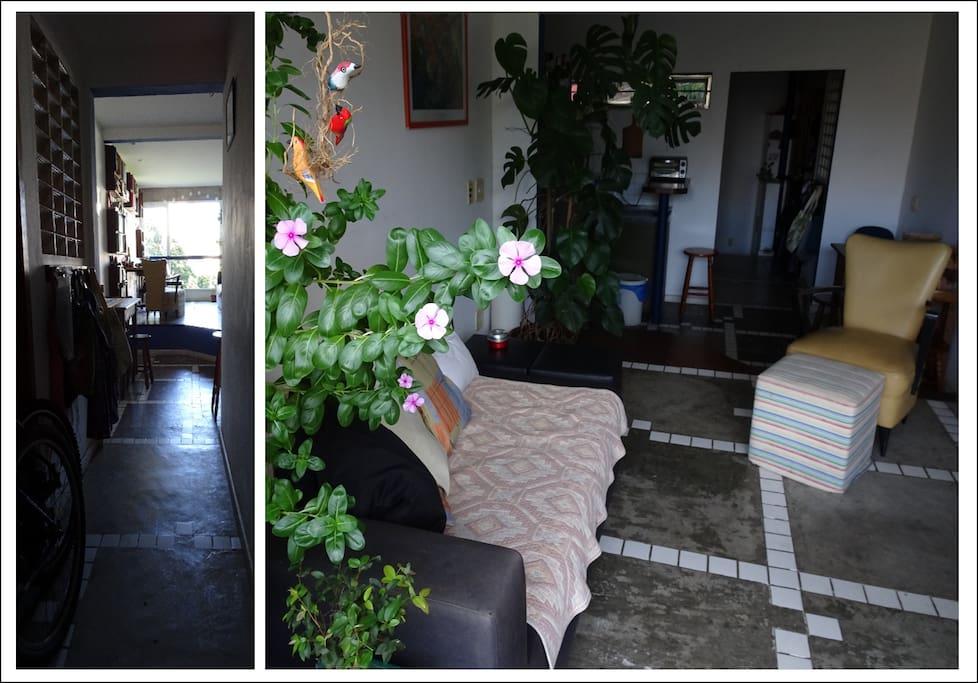 Entrada e sala da casa
