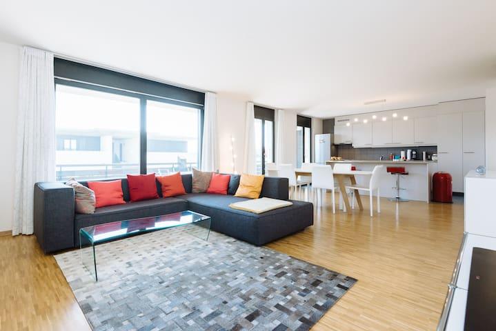 Chambre à Satigny (15 min de la ville et du CERN) - Satigny - Appartement