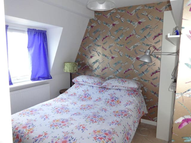 Disney Room for single guest. Double bed and tv.