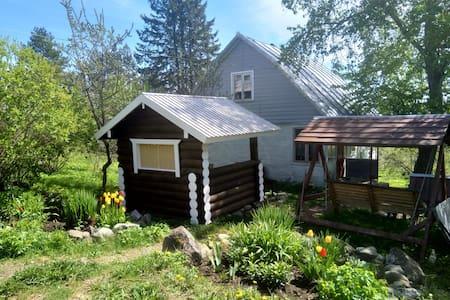 Деревенский дом в лесу