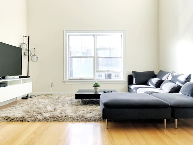 Luxury Loft 3BR Apartment - Close to T