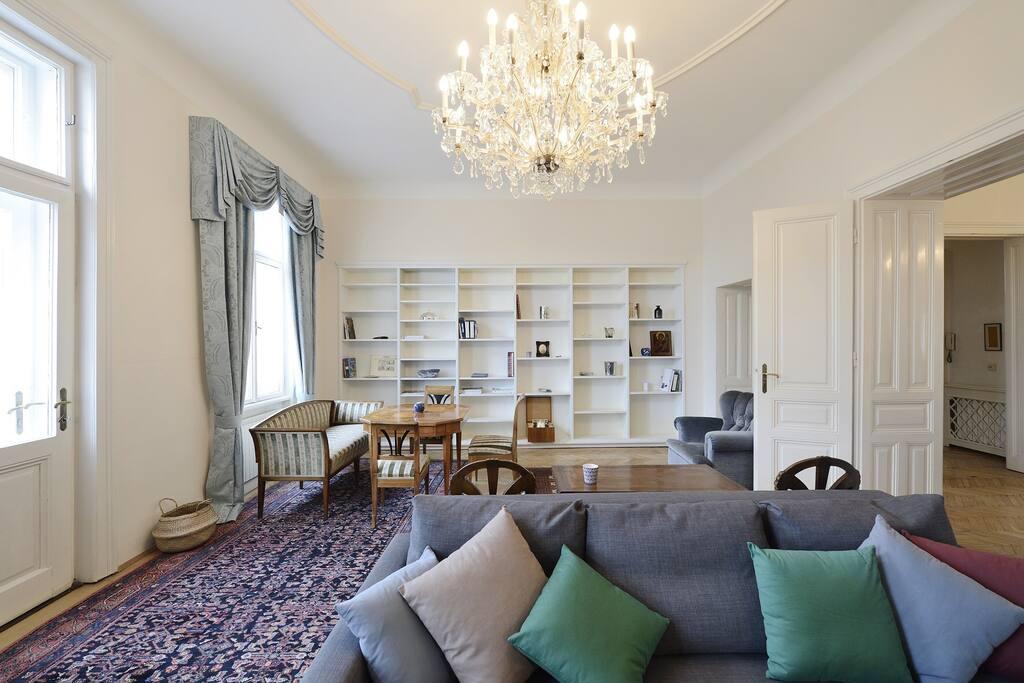 Grosszuegiger Salon mit Bibliothek